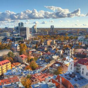 Estonia PUA Bootcamp Pickup Training Coaching